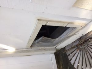 Rodent Exclusion - Rat and Mice Control Summerville
